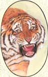 Rukmani arts  paintings   Code 179
